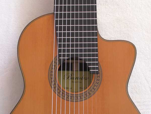 BARTOLEX Alto 11-String Guitar with, Cutaway, Sound Port!!