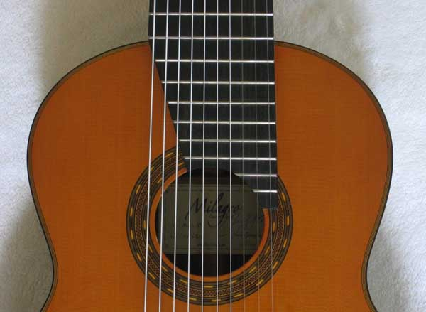 NEW MILAGRO MRC10 10-String Classical Harp Guitar [Cedar/Indian Rosewood]