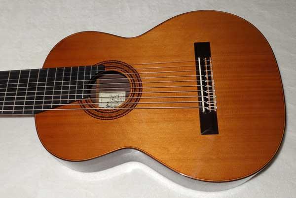 Milagro MRC10 Concert 10-String Classical Harp Guitar, Cedar Top w/Hardshell Case