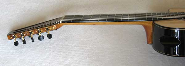 Bartolex 10-String Guitar