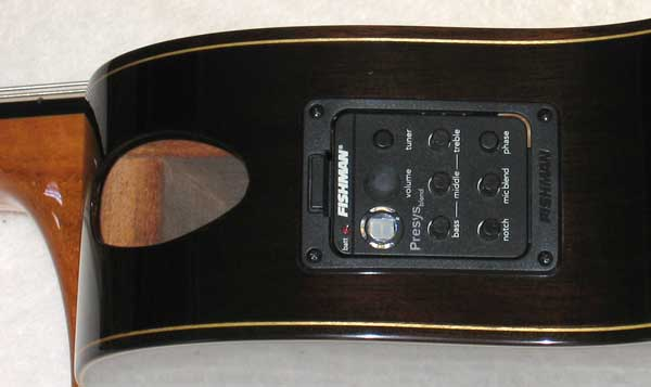 BARTOLEX SPS10CEL 10-String Harp Guitar, Spruce Top, Sound Port, Fishman Presys Pickup + Case
