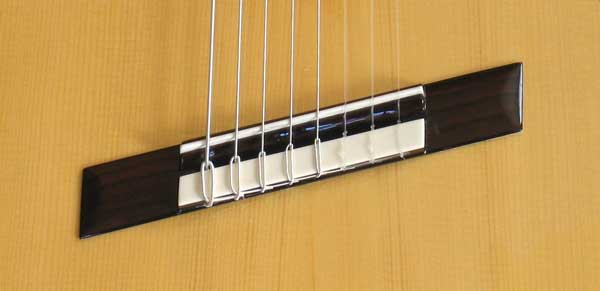 NEW Bartolex SPS8FACEL 8-String Alto Guitar  with Fanned-Frets, Sound Port + Fisman Presys PU and Case