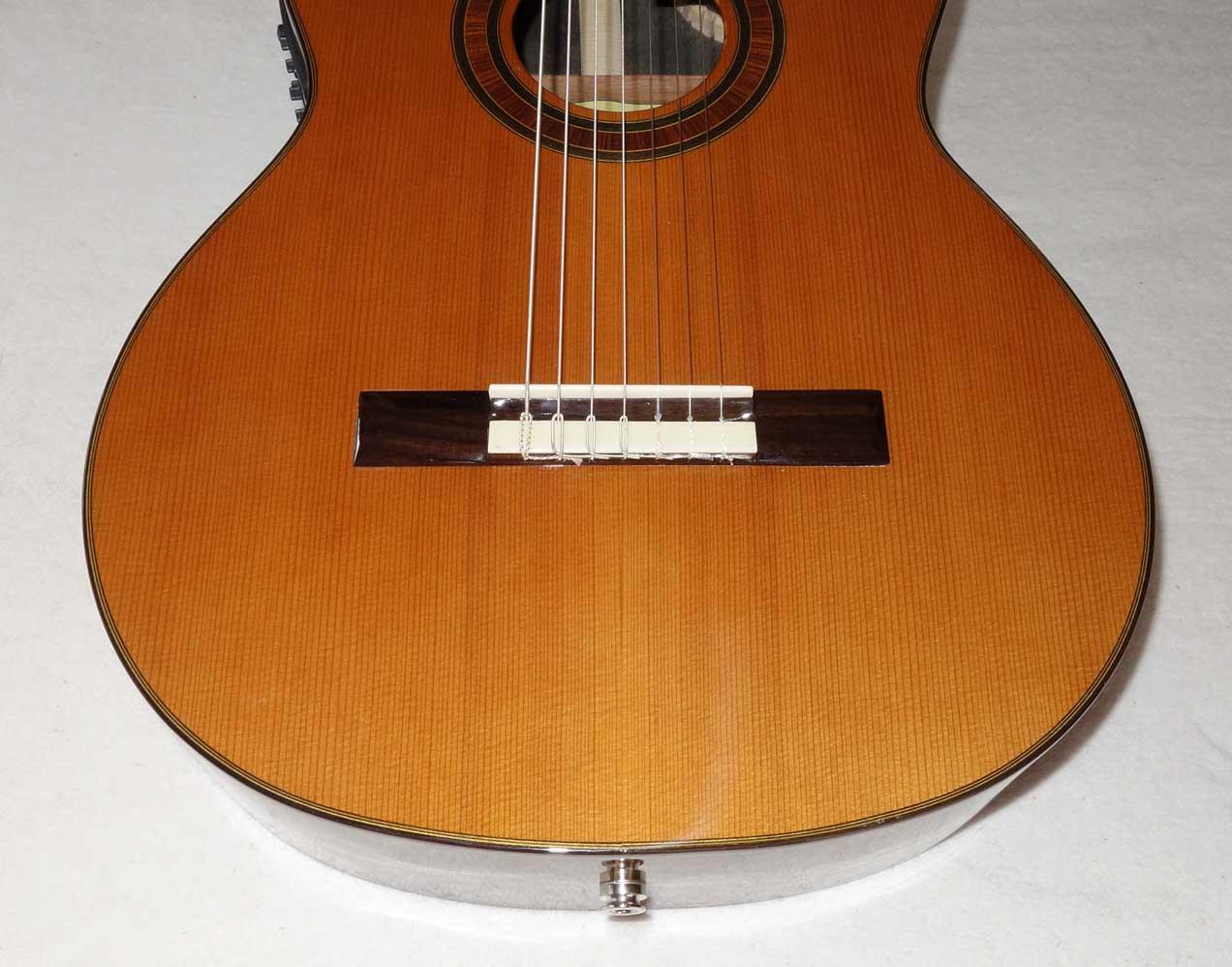 NEW Bartolex SRS7CEL 7-String Classical Harp Guitar, Fishman Presys Pickup, Cutaway, Hardshell Case